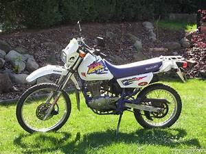 Suzuki 125 Dr : suzuki dr 125 u ivatele tolda motork ~ Melissatoandfro.com Idées de Décoration