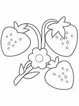 Strawberry Coloring Ausmalbilder Truskawki Malvorlagen Berries Kolorowanki Pobrania Erdbeere Printable Erdbeer Kinder Ausdrucken Kostenlos Zum Drukuj Pobierz sketch template