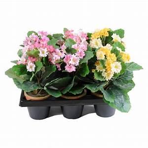 Mini Plante Artificielle : hortensia artificiel pas cher prix achat vente en ligne ~ Teatrodelosmanantiales.com Idées de Décoration