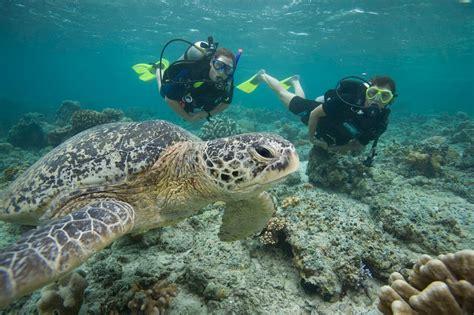 Lombok Dive Resort Lombok Scuba Diving Travel Guide Best Dive Resorts