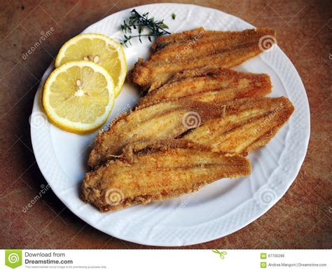 sole cuisine venetian cuisine fried sole stock photo image 67700286