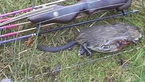 You Tube Chasse : ma saison de chasse l 39 arc 2014 2015 youtube ~ Medecine-chirurgie-esthetiques.com Avis de Voitures