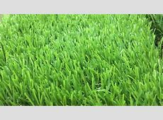 21 best artificial turf for 28 images synthetic turf