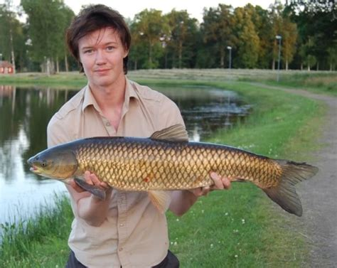 carp grass florida fish fishing catch most ontario hunting difficult did lake these