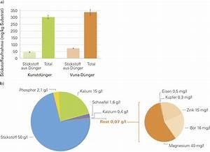 Prowin Staubsauger Test : katzenurin geruch beseitigen muffigen geruch entfernen altes fertighaus in geruch aus teppich ~ Frokenaadalensverden.com Haus und Dekorationen
