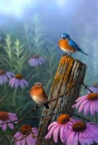 Beautiful Bird Paintings