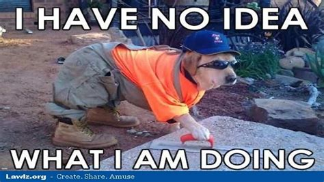 Funny Safety Memes - safety meme i have no idea what i am doing picsmine