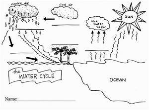 Blank Water Cycle Diagram Printable In 2020