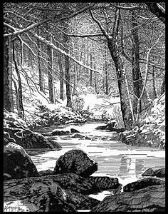 Winter in Sherwood Forest by Bob Giadrosich [©2006-2015 ...