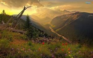 Mount Rainier National Park Wallpapers