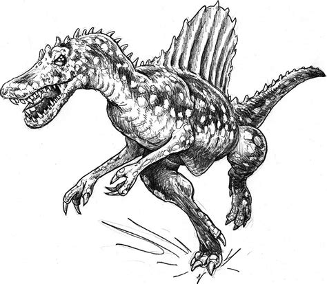 Kleurplaat Spinosaurus by Dinosaur T Rex Coloring Pages Coloring Home