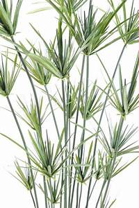 Plante Exterieur Artificielle : plante artificielle papyrus ornemental plastique en pot int rieur ext rieur h 110cm vert ~ Teatrodelosmanantiales.com Idées de Décoration
