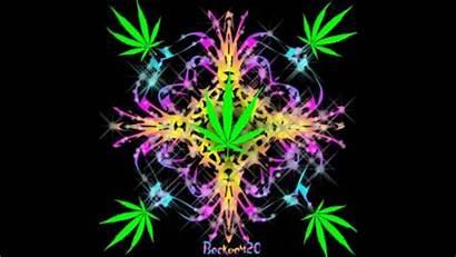 Weed Crazy Got