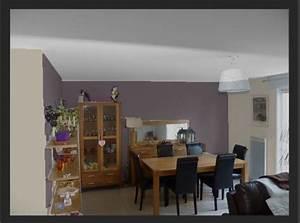 couleur salon sam meubles chene With choix de couleur de peinture pour salon 18 chambre lambris bois