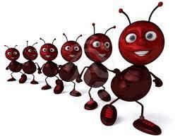 chord lagu anak semut semut kecil oleh melisa catatan octa