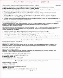 Download Executive Resume Sample For HR VP for Free