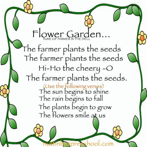 flower begins to grow preschool childrens song growing 510 | d4046a189556dc955030e17f3811deda