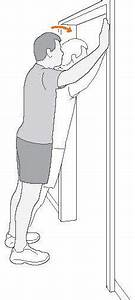Shoulder Joint   Anatomy  Physiology  Movement  Exercise