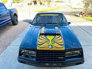 First Year Fox Body Cobra Mustang-3 door Fastback - Original Survivor-2.3l Turbo - Classic 1979 ...