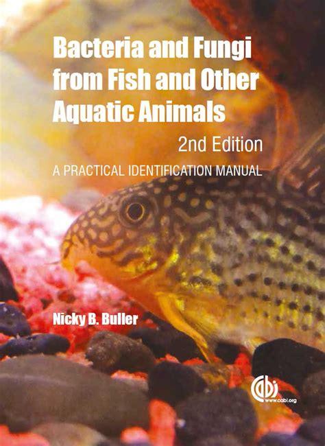 bacteria  fish   aquatic animals  practical