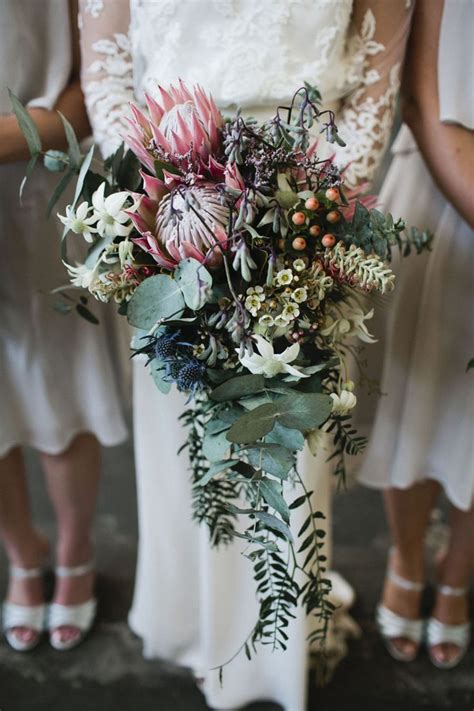 ideas  protea wedding  pinterest protea