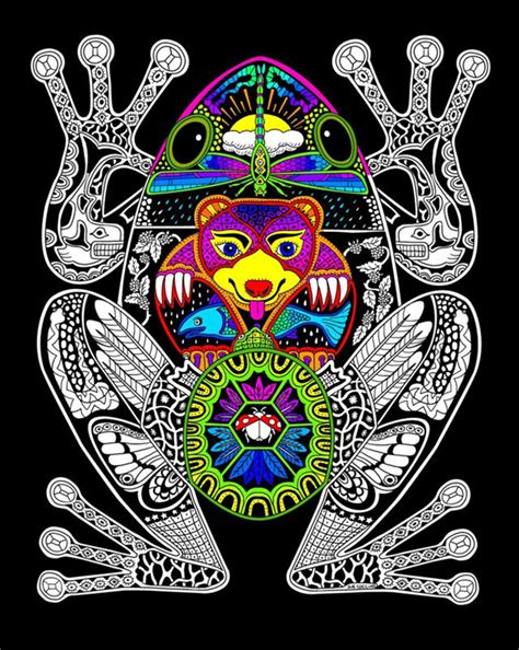frog  fuzzy velvet coloring poster  nature