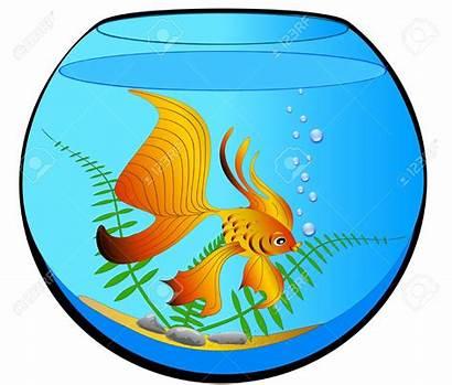 Fish Clipart Tank Aquarium Cartoon Bowl Goldfish