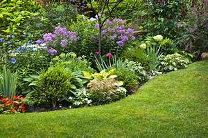 When to divide perennial flowers growing together with for Perennial flower garden