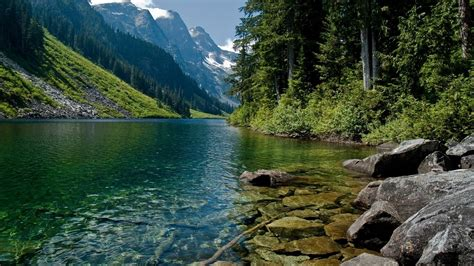 Nature, Wild, Beautiful, Landscape, Wallpaper