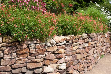 Trockenmauern Für Den Garten trockenmauer f 252 r den garten planen und umsetzen gt ratgeber