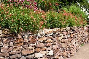 Steine Für Trockenmauer : trockenmauer f r den garten planen und umsetzen ratgeber ~ Michelbontemps.com Haus und Dekorationen