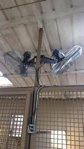 17 best images about horse barn climate control on With barn stall fans