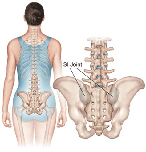 In flexion exercises you bend forward to stretch the muscles of the b. Pregnancy - Osteopathy Singapore