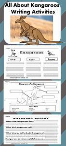 All About Kangaroos  Writing Activities  Graphic