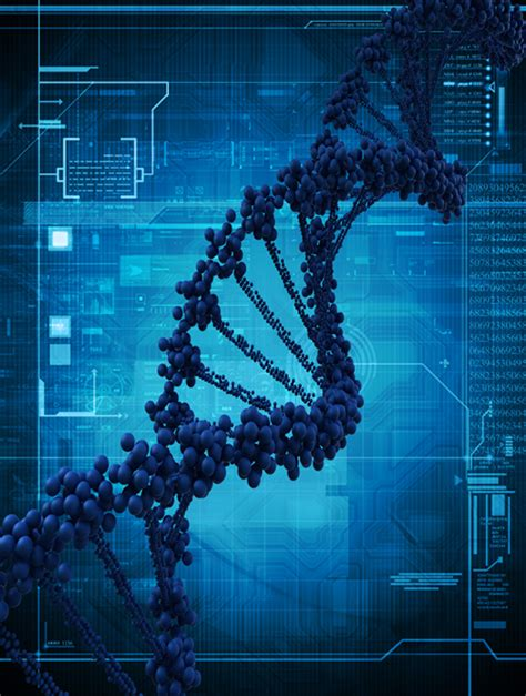 dna wealth blueprint review  peter parks  andrew fox