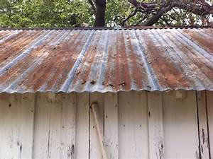 galvanized tin roof the cavender diary With barn tin roofing for sale