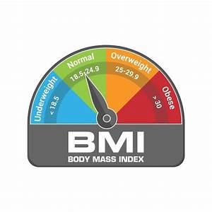 Body Mass Index Calculation Tool