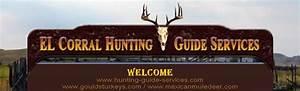 Trophy Deer Hunts  Goulds Turkey Hunts  Whitetail Hunts
