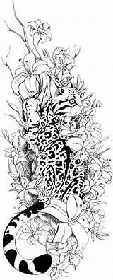 Coloring Adults Luchs Adult Tattoo Animals Galaxy Nebula Tattoos Animal Tatouage Buch Wenn Mal Sharlean Lynx Dessins Malvorlagen Tiere Malen sketch template