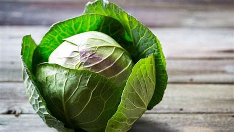 List Of 93 Vegetables You Would Love To