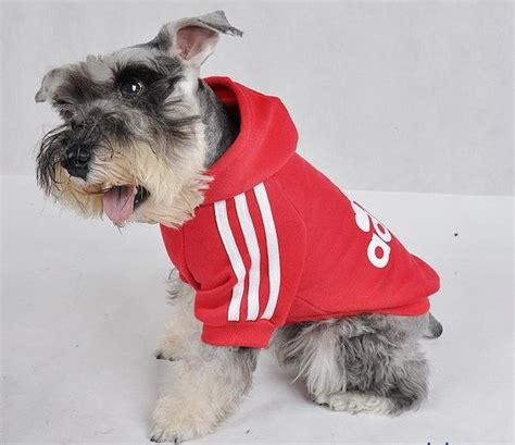 Dog clothing Christmas dog and Adidas hoodie on Pinterest