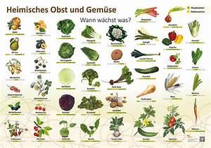 Wann Welches Gemüse Pflanzen Tabelle : heimisches obst und gem se wann w chst was natur im bild lehrtafeln f r natur lehr oder ~ Frokenaadalensverden.com Haus und Dekorationen