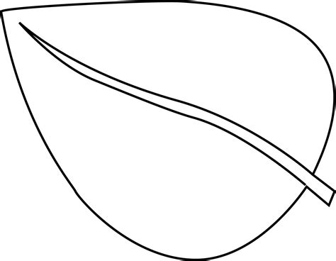 leaf coloring pages flower leaves coloring pages and print for free