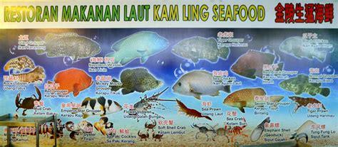 kerang geoduck open air seafood restaurants in tawau