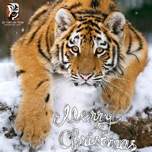 christmas tiger ecards send an ecard to a friend 21st century tiger