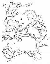 Koala Coloring Pages Printable Bear Colouring Koalas Sheets Cute Bestcoloringpagesforkids Rush Outline Essay Introduction Children Going sketch template