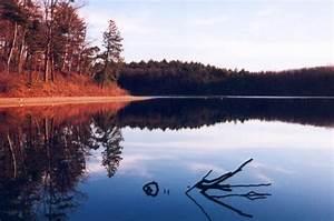 Contextualizing Walden: Thoreau's Introspective Isolation ...