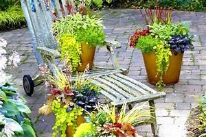 Winterharte Blumen Für Kübel : herbstpflanzen in beet k bel kasten ~ A.2002-acura-tl-radio.info Haus und Dekorationen