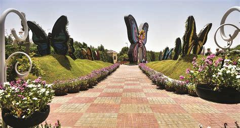 dubais butterfly garden   butterfly museum   world emtv