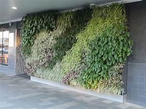 Australian, Hotel, Gets, A, Green, Wall